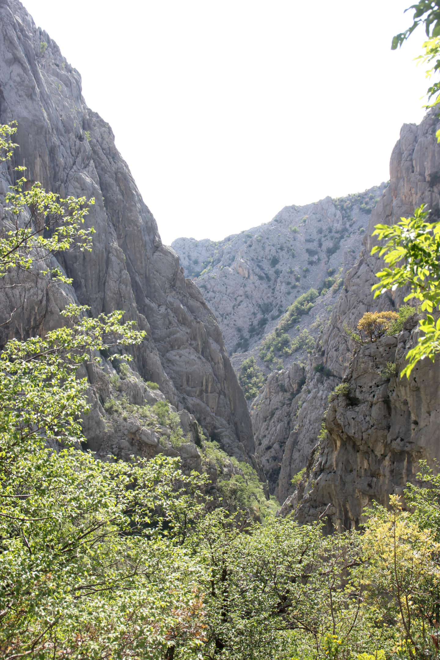 Paklenica View