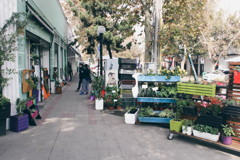Avenida Italia Santiago de Chile